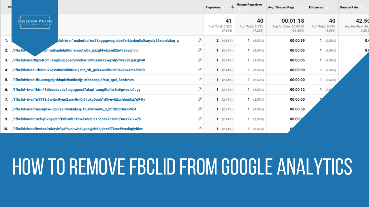 How to Remove FBCLID From Google Analytics - Sheldon Payne